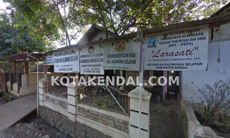 Profil Kecamatan Kaliwungu Selatan Kabupaten Kota Kendal Jawa Tengah
